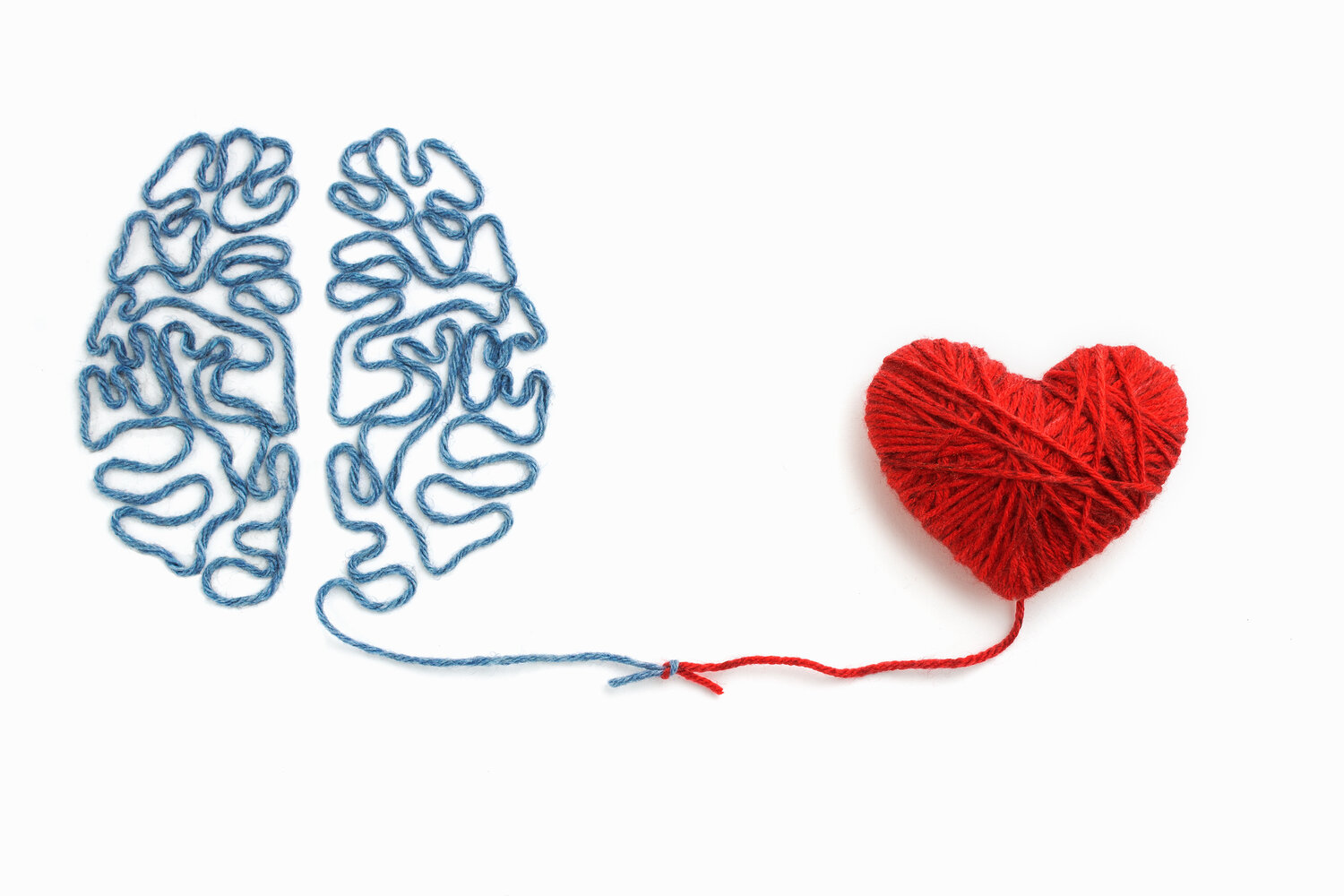 Red heart and blue brain drawn with yarn connected by a knot on a white background.