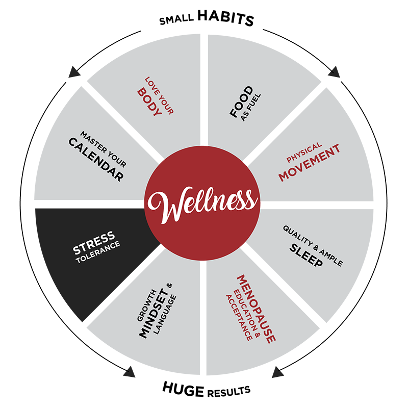 Wheel with wellness in the middle and small habits , huge success written around the outside.